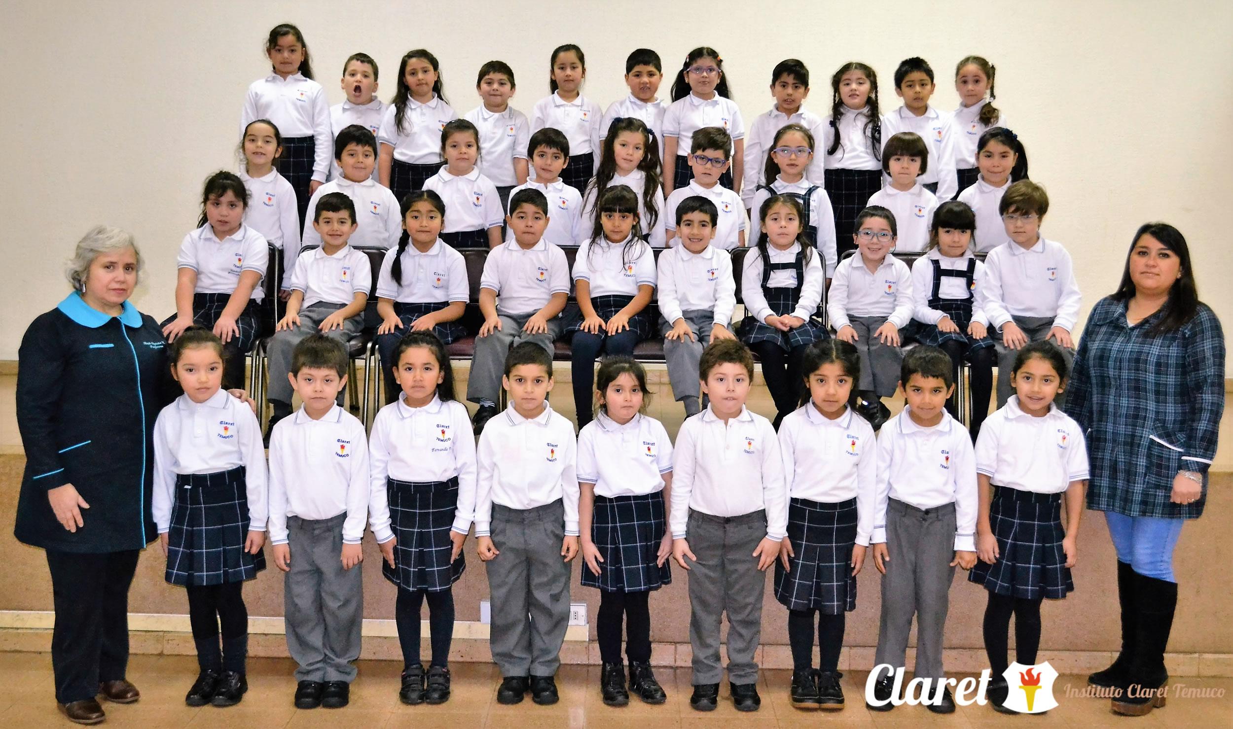 """Primer Año """"C"""" Educación Básica"""